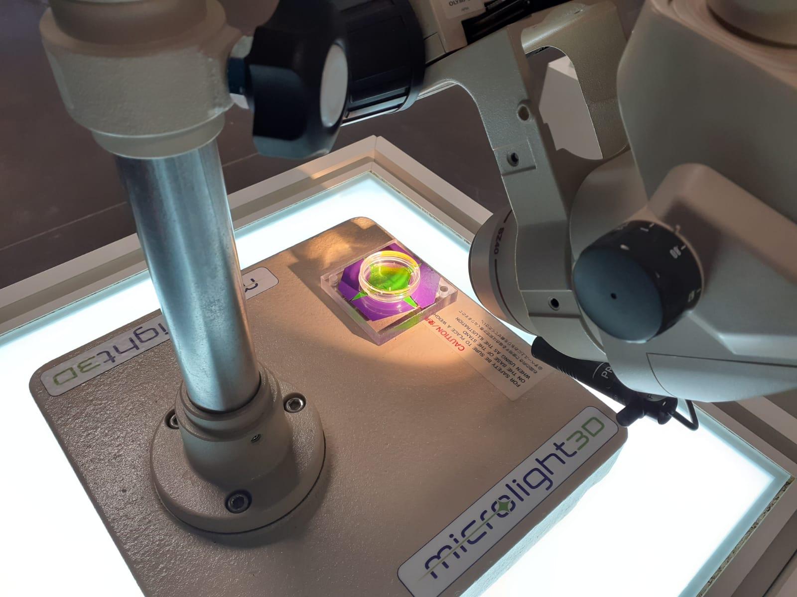 Les innovations en santé du territoire : la micro-fabrication 2D et 3D