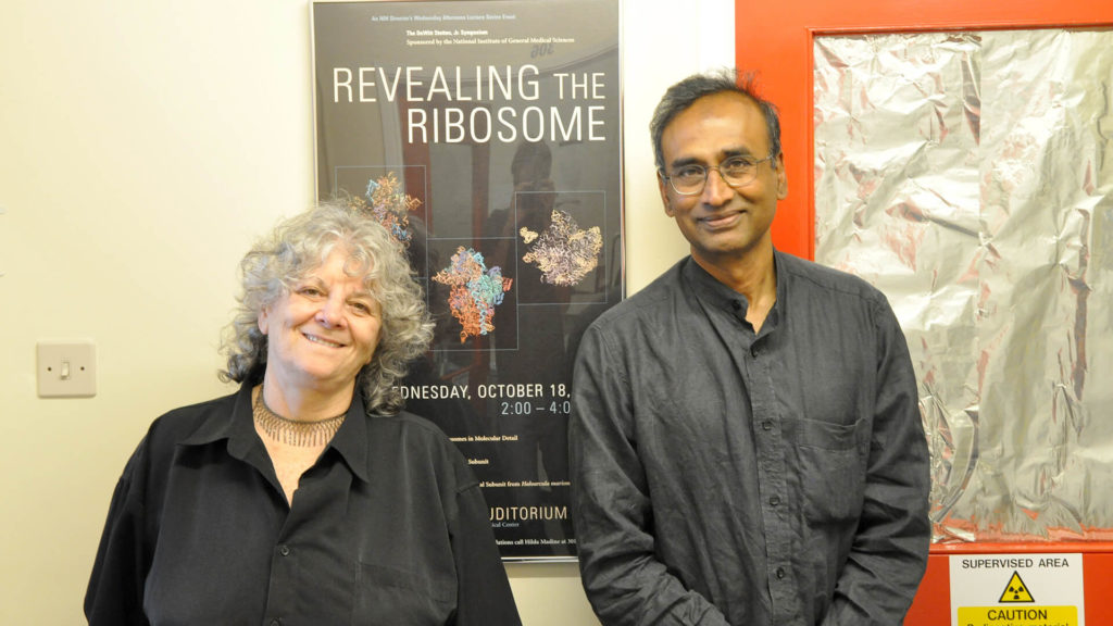Prix Nobel pour avoir montré la structure et le fonctionnement des ribosomes au synchrotron – ESRF